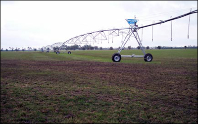 newly installed pivot irrigation system