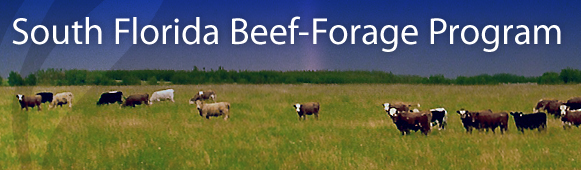 South Florida Beef-Forage Program